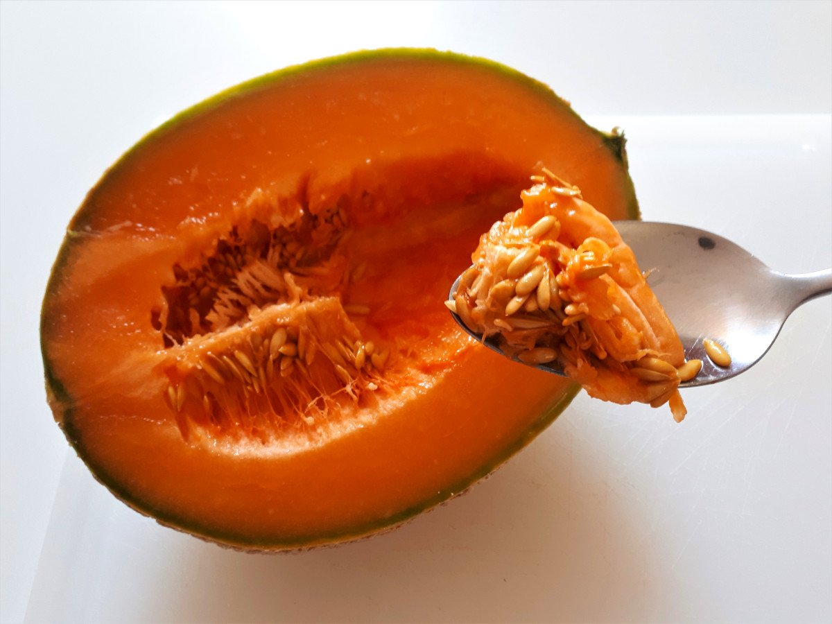 melon z szynką parmeńską wydrążanie pestek